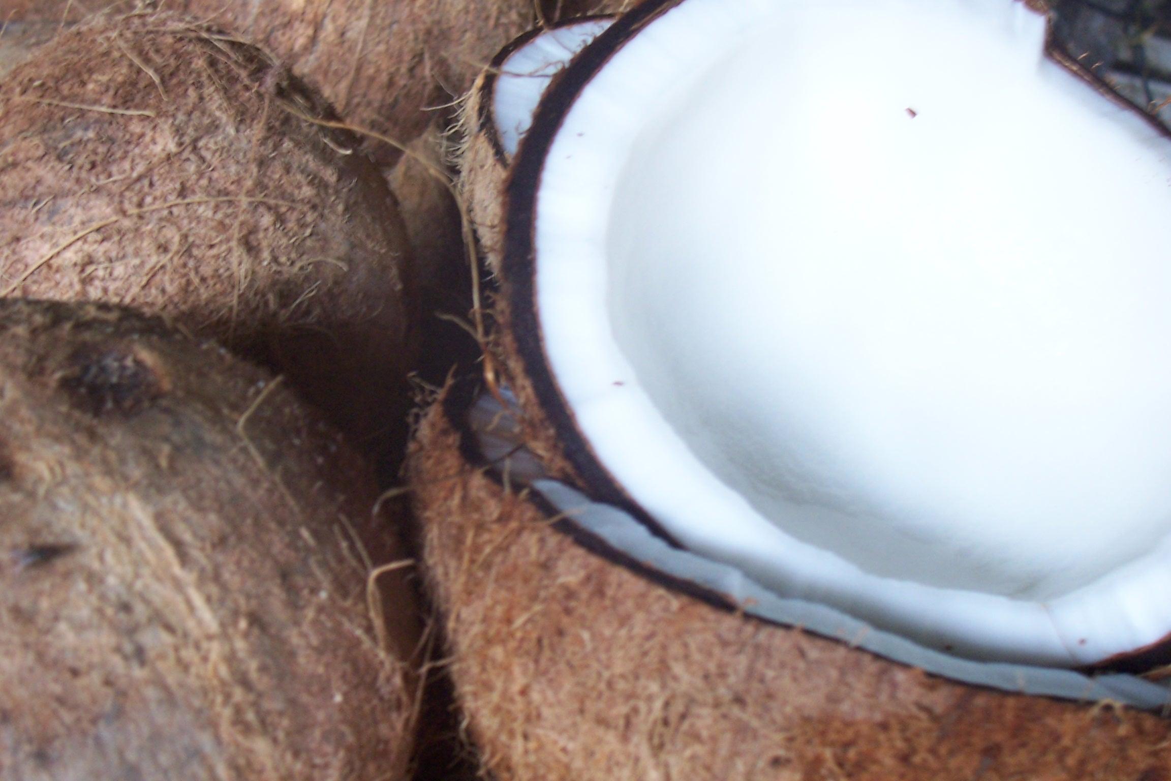 Biologische Kokosolie - Feiten voor een gezond leven